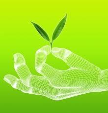 Il green tech spinge il lavoro, imprese a caccia di esperti. Ma mancano le skill - CorCom